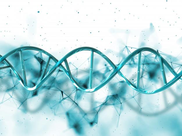 Como saber se você corre o risco de ter doenças hereditárias?